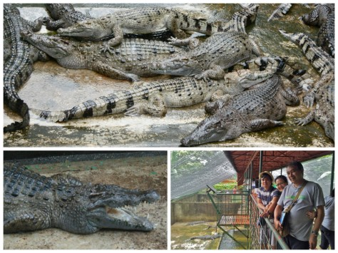 Old Crocs