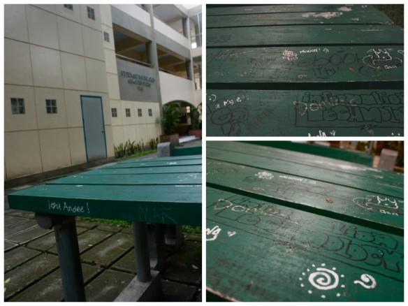 Campus Vandal